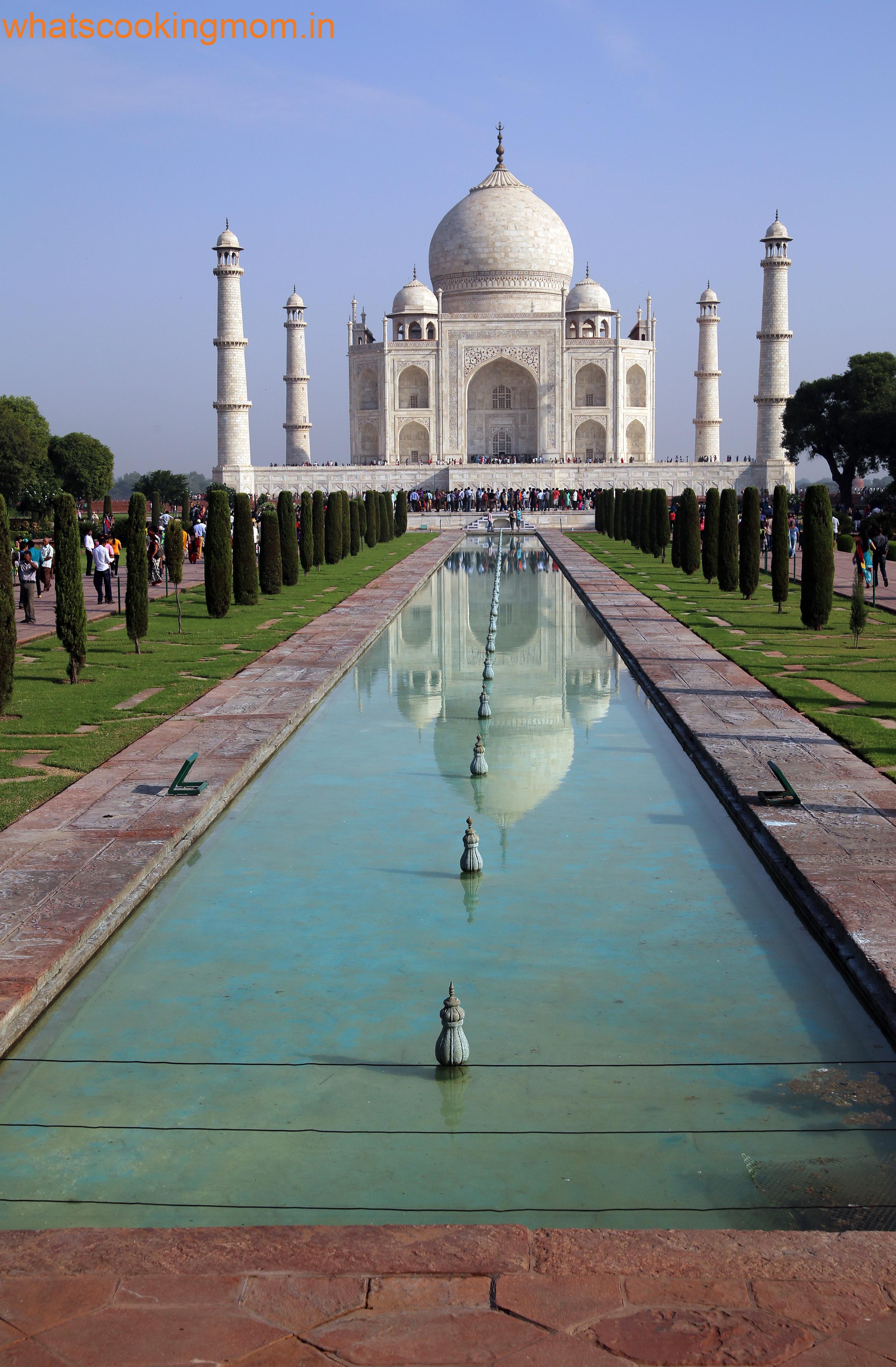 Taj Mahal Whats Cooking Mom